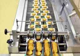 sanitation in food manufacturing being practices at a biscuit manufacturing plant