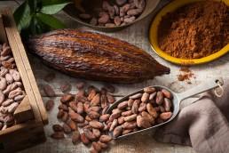 Chocolate seeds